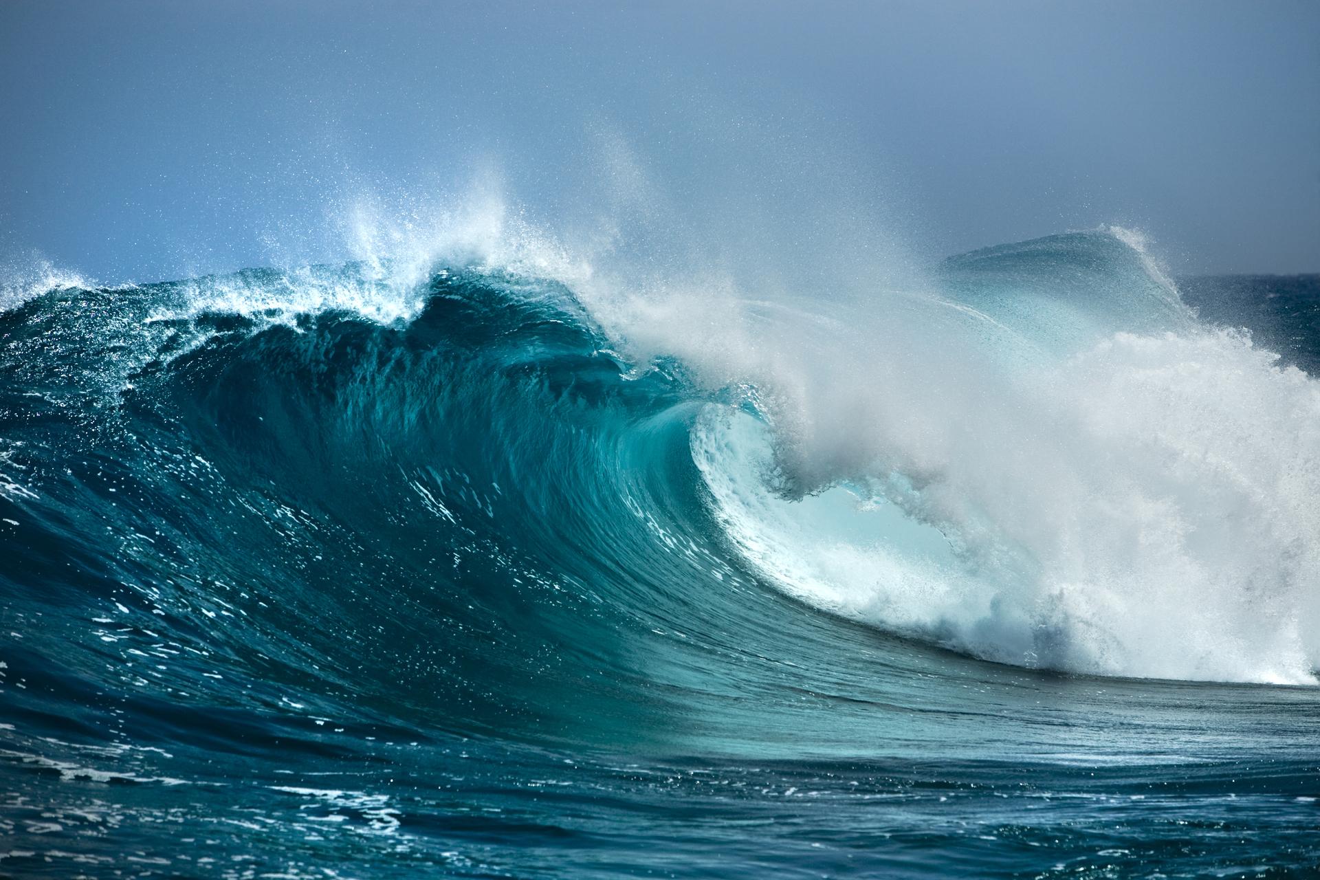 Djikee waves